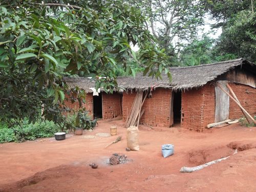 Basic mud hut Cameroon Africa